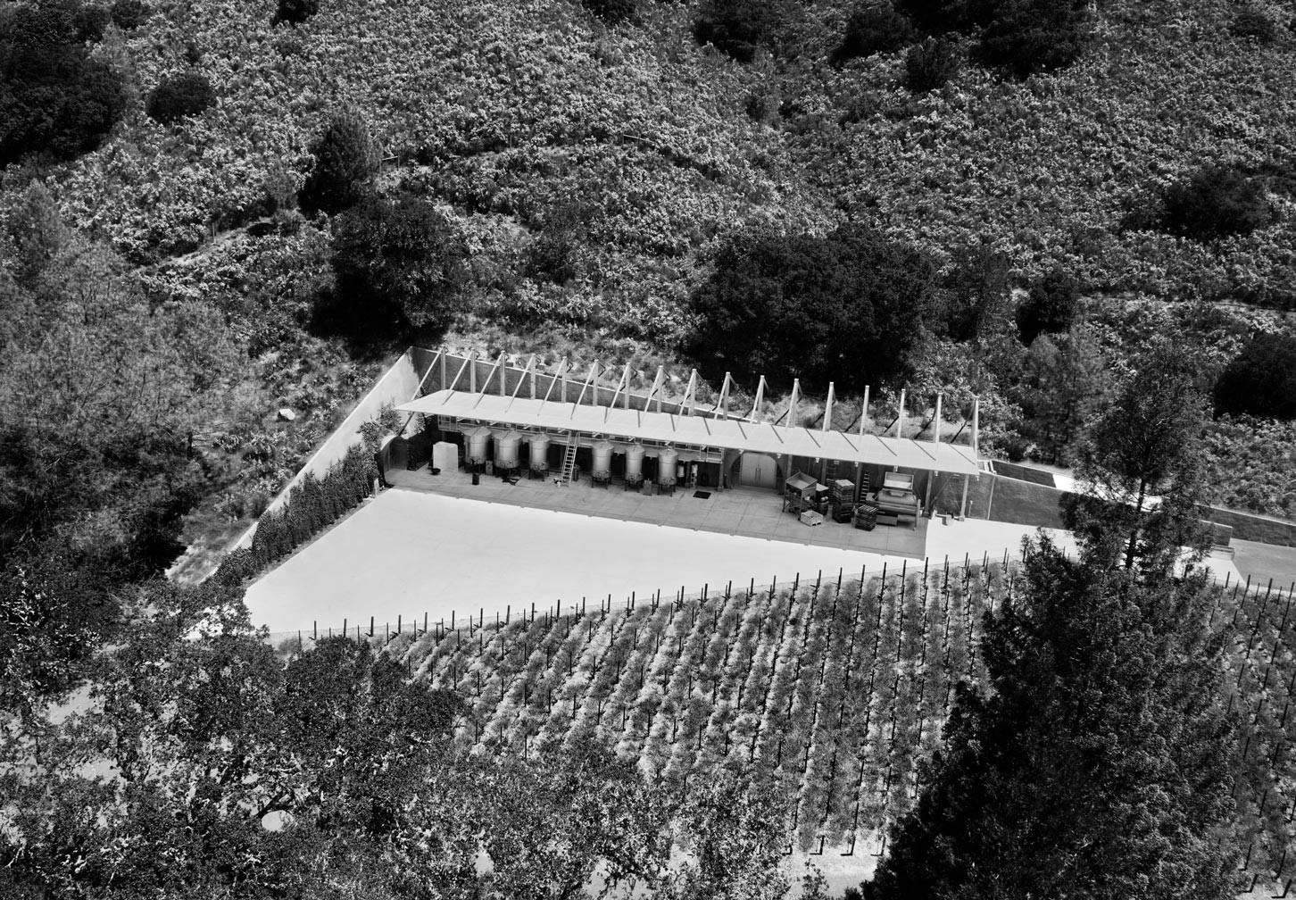 overhead view of vines and winery